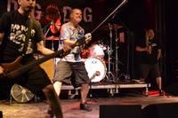 Lierop at Tuinfeest on 22/08/15